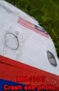 MH-17-carah-site-photo